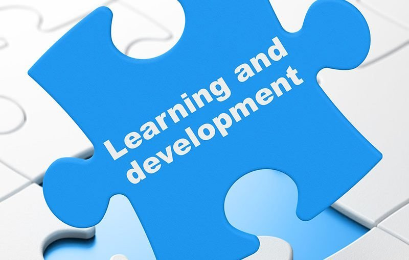 Learning and developemnt puzzle